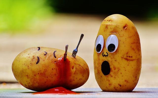 Scène de crime chez les Patates